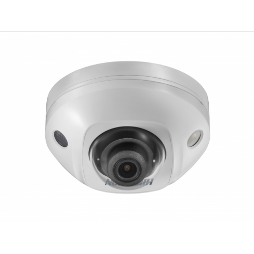 DS-2CD2543G0-IWS Hikvision